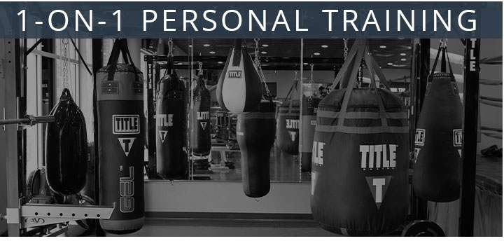 1-on-1 Personal Fitness Training in Huntersville NC, 1-on-1 Personal Fitness Training near Cornelius NC, 1-on-1 Personal Fitness Training near Birkdale NC, 1-on-1 Personal Fitness Training near Exit 23 NC, 1-on-1 Personal Fitness Training near Davidson NC